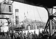 Ein Zirkuselefant wird im Hamburger Hafen / Magdeburger Hafen aus einem Frachtschiff entladen - Hafenarbeiter und Kranführer sehen zu.