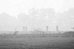 Radausflug im Herbst - Radfahrer / Radfahrerin auf einem Feldweg im Nebel bei Otterndorf.