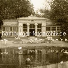 Ansicht vom Stelzvogelhaus im Tiergarten beim Dammtor - Flamingos stehen im Teich vor der klassizistischen Architektur des Vogelhauses.