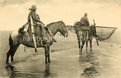 Krabbenfischer zu Pferd am Strand - Krabbenetze und Weidenkörbe / Frankreich.