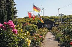Blumenpracht im Kleingarten 723 am Niedergeorgswerder Deich; Pfingstrosen und Strauchrosen stehen in voller Blüte.