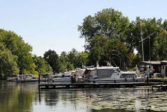 Sportboote und Motoryachten liegen am Steg im Yachthafen der Wilhelmsburger Dove Elbe. Seerosenblätter schwimmen auf dem Wasser.