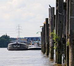 Liegeplatz für Binnenschiffe am Elbufer der Süderelbe in Hamburg Wilhelmsburg, Finkenriek  Stillhorn. Am Ufer stehen alte Holzdalben aus Baumstämmen in den Boden gerammt.