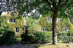 Einzelhäuser / Stadtvilla, Stadtvillen dicht mit wildem Wein bewachsen; Architekturbilder aus Hamburg Fuhlsbüttel.
