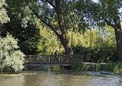 Die Honartsdeicher Wettern münden in die Wilhelmsburger Dove Elbe. Die Ufer sind dicht mit Weiden, Pappeln und Erlen bewachsen.