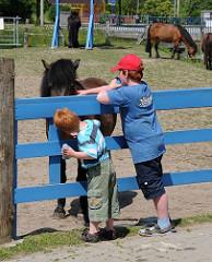 Kinder streicheln durch den blauen Zaun ein Pferd auf dem Kinderbauernhof in Hamburg Kirchdorf.