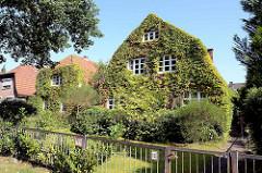 Stadtvillen dicht mit wildem Wein bewachsen; Architekturbilder aus Hamburg Fuhlsbüttel.