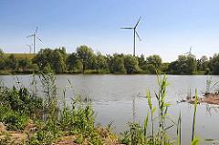Die vier Windkraftanlagen auf dem Hügel der ehemaligen Mülldeponie Georgswerder - im Vordergrund Schilf am Ufer des Georgwerders Randgrabens. Die ehemalige Mülldeponie Georgswerder wurde von 1948 - 1979 genutzt, um Haus und Sondermüll zu entsorge