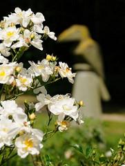 Die Rosen blühen im Rothenburgsorter Traunspark - im Hintergrund einer der beiden Vogelskulpturen, die der Künstler Klaus Becker 1982 geschaffen hat.