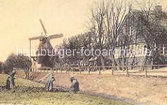 Historische Aufnahme der Wilhelmsburger Windmühle ca. 1900. Die Windmühle wurde 1885 als Galerie-Holländermühle gebaut.