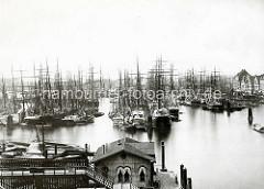 Alte Fotografie vom Hamburger Niederhafen Segelschiffe  liegen dicht gedrängt  an den Holzdalben.