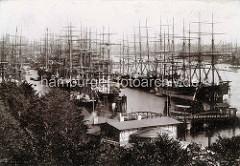 Blick über die Landungsbrücken  in den Niederhafen in Hamburg; Segelschiffe / Frachtsegler liegen an den Dalben.