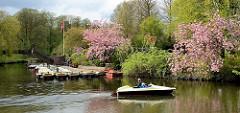 Blick zur Bootsvermietung auf der Liebesnsel im Stadtpark von Hamburg Winterhude; blühende Zierkirschen  am Wasser.