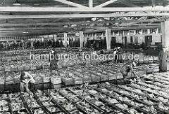 Historische Fotografie einer Fischauktion in Wesermünde / Bremerhaven; mit frisch gefangenem Fisch gefüllte Kisten stehen dicht aneinander in der großen Fischauktionshalle.