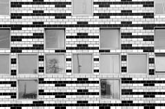 Quadratische Fenster - Ziegelfassade eines Hochhauses in Bremerhaven; schwarz-weiß-Fotografie.