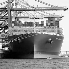 Bug der MOL TRIUMPH unter Containerbrücken im Waltershofer Hafen - Container Terminal Burchardkai in Hamburg; Schwarz-Weiss Darstellung.