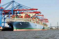 Das Containerschiff MOL TRIUMPH liegt im Hafen Hamburgs / Container Terminal Burchardkai.