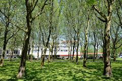 Blick vom Jahnring zur City Nord in Hamburg Winterhude - Baumreihen, im Hintergrund das Leonardo Hotel.