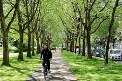 Allee mit Fahrradweg - Bürostadt im Grünen; City Nord in Hamburg Winterhude.