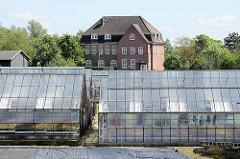 Treibhäuser / Glashäuser in Hamburg Tatenberg; dahinter das alte Schulgebäude.