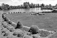 Garten mit Buchsbaum und Rasen an der Küsterbrack in Hamburg Ochsenwerder. Eine Brack  ist die Bezeichnung für einen Teich / See.