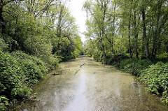 Naturschutzgebiet Rhee im Hamburger Stadtteil Wilhelmsburg; das NSG  ist 18 Hektar groß und  liegt im Stromspaltungsgebiet der Elbe.