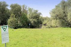 Naturschutzgebiet Rhee im Hamburger Stadtteil Wilhelmsburg; das NSG  ist 18 Hektar groß und  liegt im Stromspaltungsgebiet der Elbe - es ist ein Rest einer ehemals großflächigen Tideauenlandschaft.