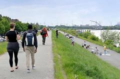 Sonntag Nachmittag in Hamburg Wilhelmsburg - Grillen und Spaziergang auf dem Deich am Spreehafen, ehem. Zollgrenze / Freihafengrenze.