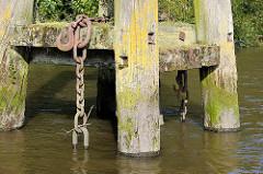 Holzdalben / Anlegepfähle aus Holz - Eisenketten hängen ins Hafenwasser; Prager Ufer im Moldauhafen, Hafenbecken im Hamburger Hafen.