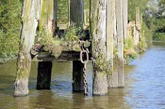 Holzdalben / Anlegepfähle aus Holz, vom Zahn der Zeit angefressen; Wildkraut wächst aus vermodertem Holz, eine Eisenketten hängt ins Hafenwasser; Prager Ufer im Moldauhafen, Hafenbecken im Hamburger Hafen.