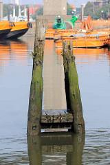 Reste alter Holzdalben, bemoost und mit Farn bewachsen - Arbeitschiffe im Rugenberger Hafen in Hamburg Waltershof.