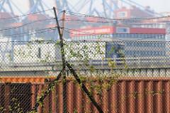 Alter Zollzaun mit Stacheldraht - Container Terminal Hamburg Burchardkai.