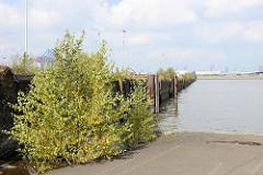 Laderampe am Sthamerkai im Hamburger Oderhafen; lks. der Chilekai - im Hintergrund der Ellerholzhafen.