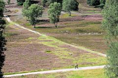Wanderwege durch das Naturschutgebiet Fischbeker Heide - die Heide blüht zumeist von Mitte August bis Anfang September.