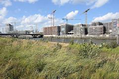 Der Baakenhafen in der Hamburger Hafencity; im Vordergrund Wildkraut am Petersenkai - auf der anderen Seite des Hafenbeckens Baustellen mit Baukränen für Wohngebäude.