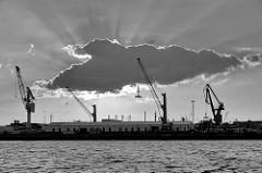 Gegenlichtaufnahme, Schwarz-Weiß - Kräne im Hamburger Hafen / Steinwerder.