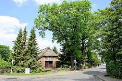 Fachwerkscheune mit Reetdach - hohe Eichen, alte Bäume in Stelle.