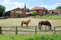 Pferdekoppel mit Holzzaun und Pferden im Dorfzentrum von Stelle, im Hintergrund der Kirchturm der St. Petri Kirche.
