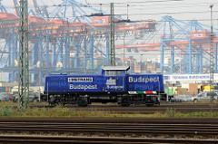 Lokomotive 295 082 - 2 der Metrans in Hamburg Waltershof - im Hintergrund Containerkräne vom Container Terminal Burchardkai.