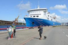 Hafenpromenade in Ventspils / Windau, Lettland; bunte Plastikkuh auf dem Kai - im Hintergrund das Fährschiff Scottish Viking.
