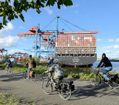 Fahrradtour am Container Terminal Hamburg Altenwerder - das Containerschiff YM Wittness liegt unter den Containerbrücken.