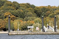 Anleger Wittenbergen in Hamburg Rissen - herbstlich gefärbte Bäume am Elbhang.
