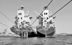 Die Frachtschiffe Cape Spea und Cape Spencer liegen an Dalben in der Norderelbe im Hambuger Hafen; re. der Holthusenkai, lks. der Kirchepauerkai.