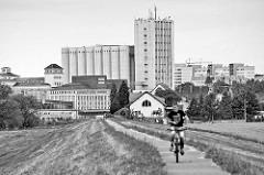 Blick vom Elbdeich zur Industriearchitektur der Muskatorwerke / Mischfutterhersteller am Hafen in Riesa; 2013 wurde der Prodkuktionstandort stillgelegt, die Firma ging in Insolvenz.
