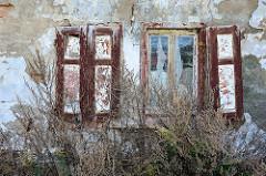 Verlassenes Wohnhaus an der Flutgrabenstraße in Mansfeld - alte Fenster mit Holzläden; hohes Wildkraut.