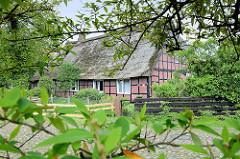 Fachwerkhaus mit Reet gedeckt - alter Ortskern von Meckelfeld.