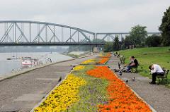 Uferpromenade an der Weichsel in Toruń; bunte Blumenrabatten - Józef-Piłsudski-Brücke.