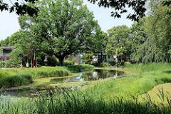 Teich im Stadt- / Hachede-Park in Geesthacht; ehem. Kräutergarten vom Pastorat.