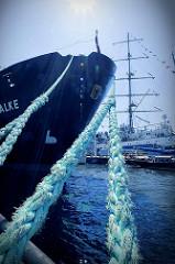 Schiffsbug im Hamburger Hafen - mit starken Tauen ist das Schiff am Landungssteg vertäut; im Hintergrund Masten eines Segelschiffs - Gegenlichaufnahme.