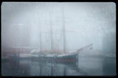 Das Segelschiff Fridtjof Nansen liegt bei Nebel im Überwinterungshafen von Hamburg Harburg.
